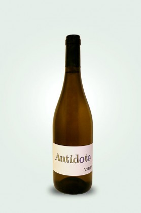 Antidote 2019